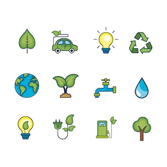 Definir a ecologia para cuidar do meio ambiente natural