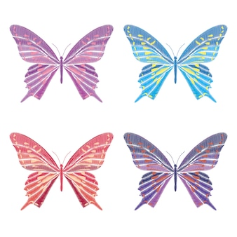 Definir coleção de borboletas isoladas no fundo branco