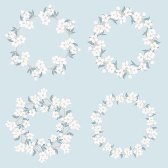 Definir coleção de quadros florais. camomila e esqueça-me-não-flores redondo padrão Vetor Premium