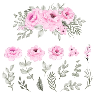 Definir flor aquarela isolada rosa e folha