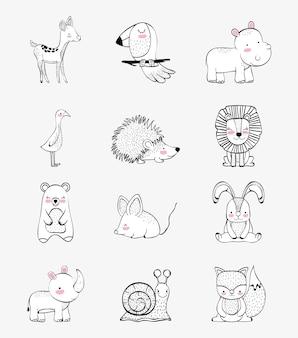 Definir o personagem de animais selvagens fofos