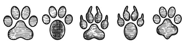 Definir trilha de pata desenhada à mão
