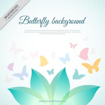 Deixa o fundo com borboletas coloridas