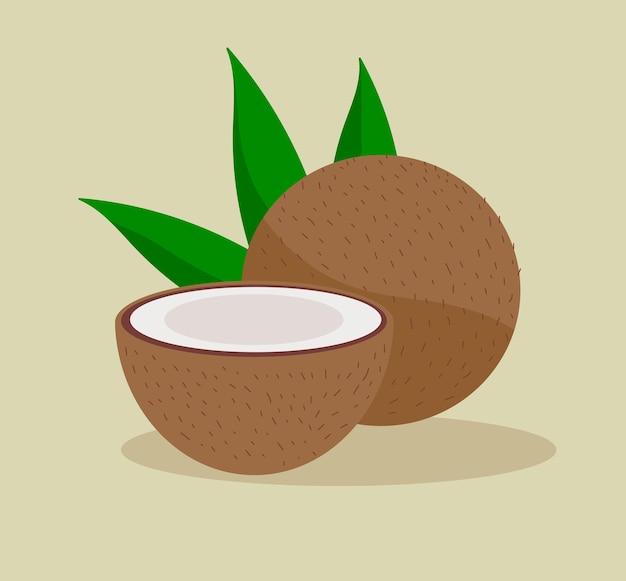 Delicioso coco tropical maduro
