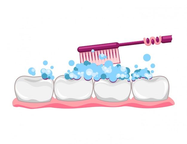 Dente bonito com escova de dentes e creme dental. escovar os dentes limpos. cuidado de crianças dentais. dentadura nas gengivas. ilustração de personagem de desenho animado moderno estilo simples