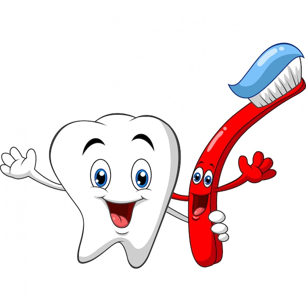 Dente dental dos desenhos animados, segurando a escova de dentes