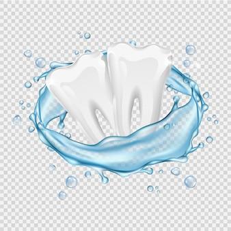Dentes realistas. dentes brancos limpos e respingos de água no fundo transparente
