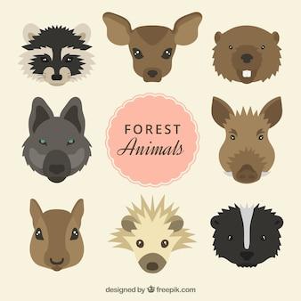 Desenhadas mão cabeças animais selvagens