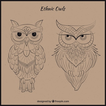 Desenhadas mão corujas étnicos