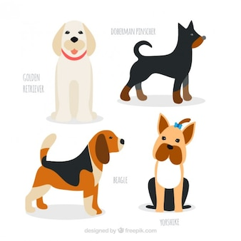 Desenhadas mão raças de cães embalar