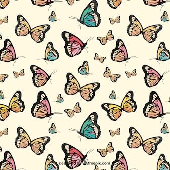 Desenhadas mão tipos de borboletas padrão