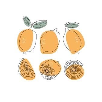 Desenhado a mão com limão inteiro e fatia