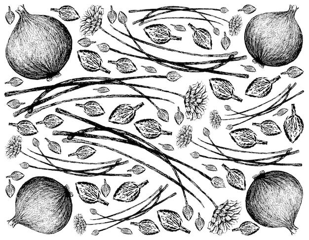 Desenhado à mão de cebolinhas de alho com cebola