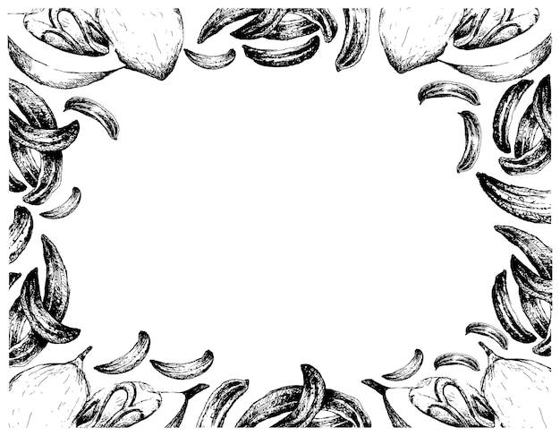 Desenhado à mão de cominho com moldura de frutas de noz-moscada