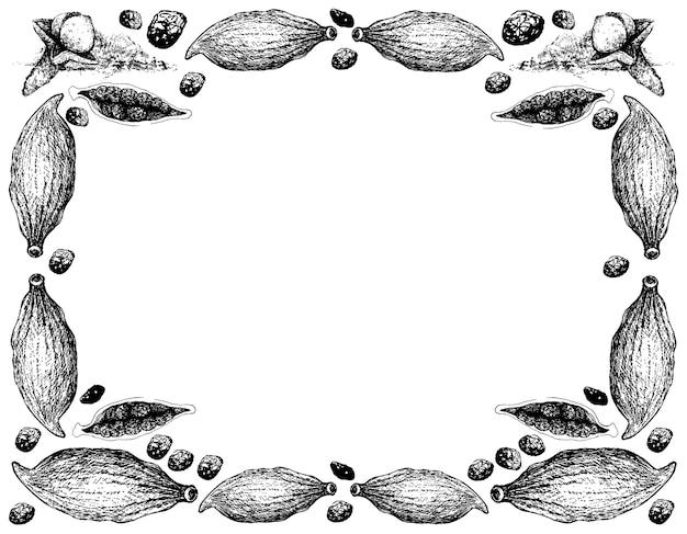 Desenhado à mão de cravo com moldura de vagens de cardamomo