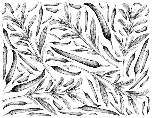 Desenhado à mão de salgados de verão com pimenta