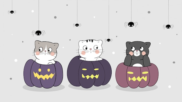 Desenhe o gato de banner na abóbora com aranha. para o dia do halloween.