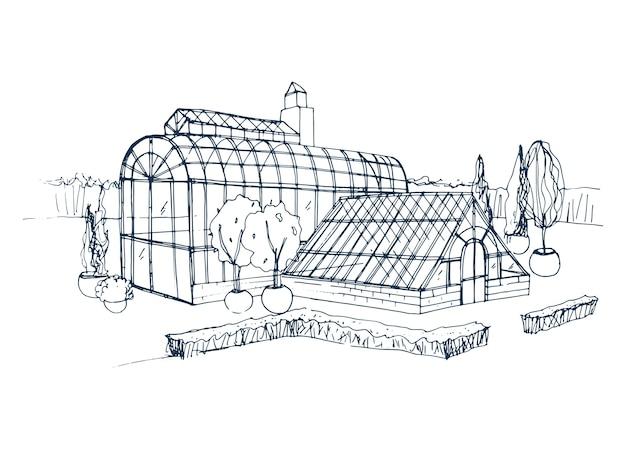 Desenho à mão livre do exterior do jardim botânico exótico, rodeado por arbustos e árvores que crescem em vasos. desenho aproximado da fachada da estufa de vidro. ilustração monocromática desenhada à mão.