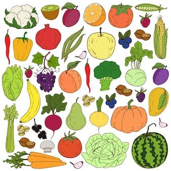 Desenho à mão saudável de frutas e vegetais coloridos