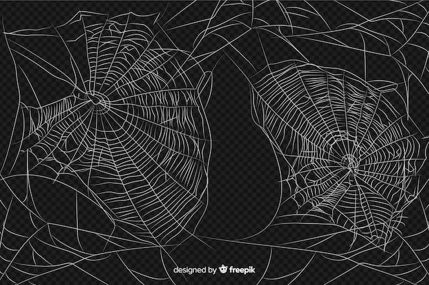 Desenho abstrato realista de teia de aranha