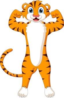 Desenho animado bonito tigre posando exibindo músculos