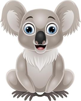 Desenho animado coala bebê fofo sentado