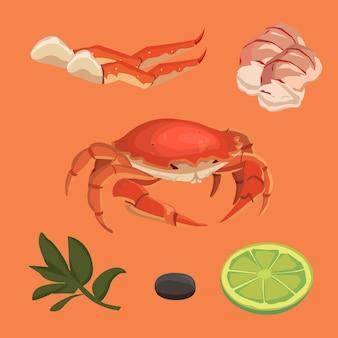 Desenho animado de caranguejo coleção de comida omar conjunto de frutos do mar e caranguejo