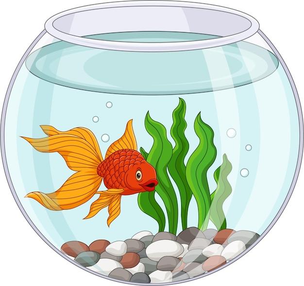 Desenho animado de peixinho dourado nadando em aquário