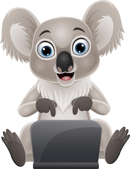 Desenho animado engraçado bebê coala com laptop
