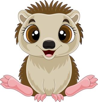 Desenho animado engraçado bebê ouriço sentado