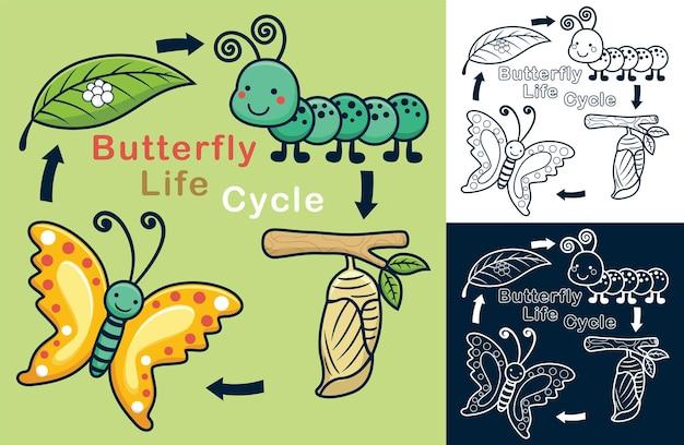 Desenho animado engraçado do ciclo de vida de uma borboleta
