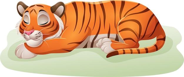 Desenho animado engraçado tigre dormindo na grama Vetor Premium