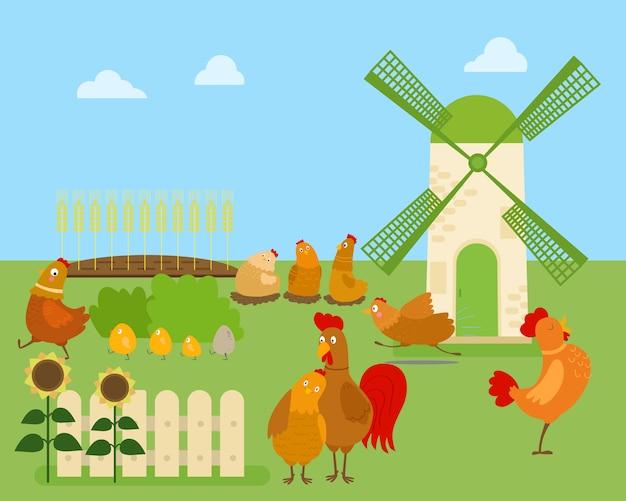 Desenho animado frango, galinha e galo em várias poses