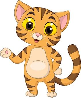 Desenho animado gatinho fofo se apresentando em branco