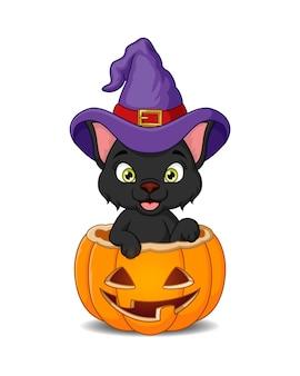 Desenho animado gato preto com chapéu de bruxa dentro de abóbora de halloween