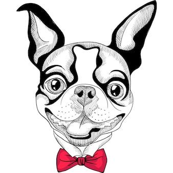Desenho animado hipster da raça boston terrier sorrindo