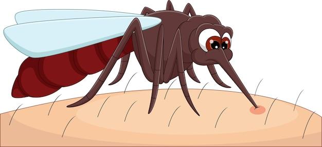Desenho animado mosquito mordendo pele humana