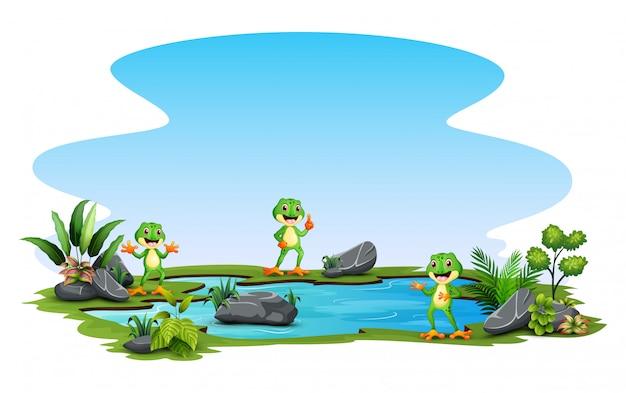 Desenho animado três um sapo em pé ao redor da lagoa pequena
