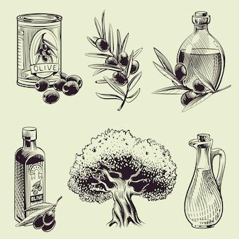 Desenho azeitonas de mão. vintage ramos de oliveira garrafas de óleo e lata.