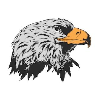 Desenho da cabeça de águia fundo