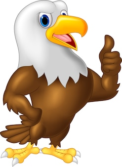Desenho de águia dando o polegar para cima