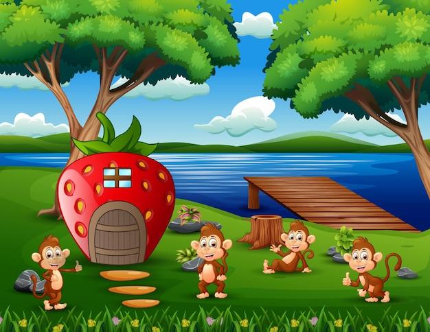 Desenho de alguns macacos brincando na casa de morango