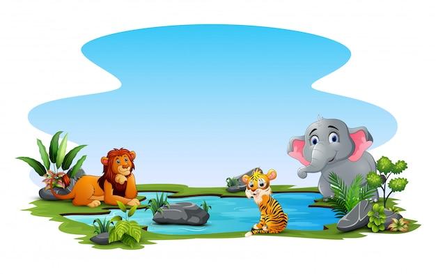 Desenho de animais selvagens brincando na lagoa