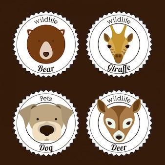 Desenho de animais