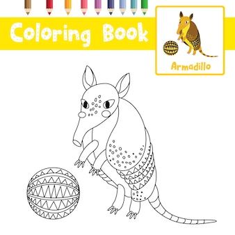 Desenho de armadillo com bola para colorir