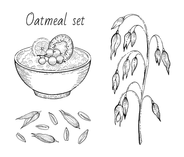 Desenho de aveia. tigela de mingau de aveia com leite, frutas, orelha de aveia, grãos. arte do ícone gravada.
