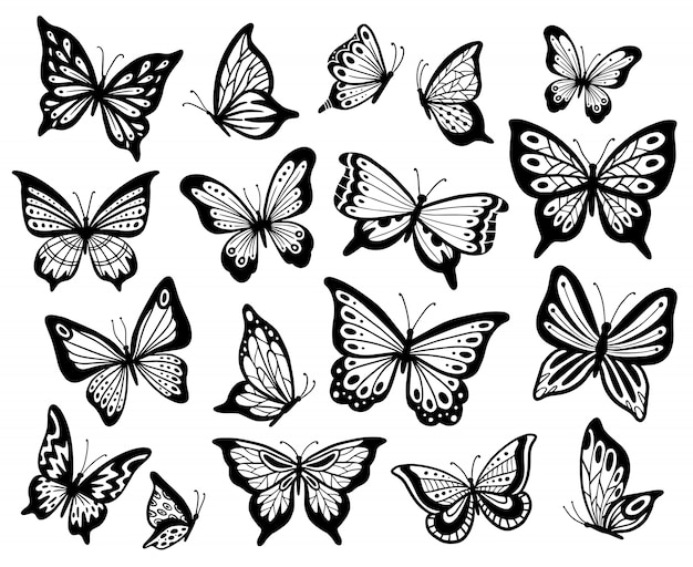 Desenho de borboletas. borboleta de estêncil, asas de mariposa e insetos voadores isolaram conjunto de ilustração