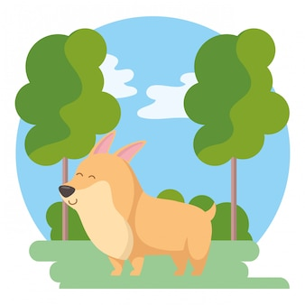 Desenho de cão