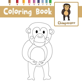 Desenho de chimpanzé para colorir