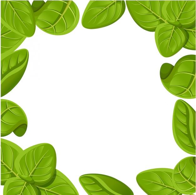 Desenho de conjunto de orégano. planta de orégano com folhas. ilustração do estilo gravado à base de plantas. desenho detalhado de produto orgânico. página do site e aplicativo móvel para cozinhar ingredientes picantes
